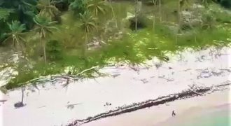 Terreno con playa en venta en Samaná República Dominicana