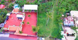 Campo de Árboles Frutales y Arroyo